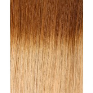 100% Remy Colour Swatch Ombre 10T24