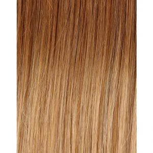 100% Remy Colour Swatch Ombre 18T22