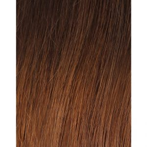 100% Remy Colour Swatch Ombre 3T6